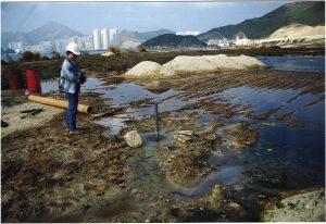 hongkongtkolandfill